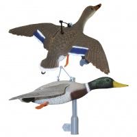 Чучело утки кряква (летящая) FL01-02 (утка+селезень)