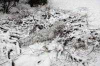 """Маскировочный костюм Jackal Ghillie Suits 3-D Body system МКЛк-СН/GS01B-SC (Camosystems, Новая Зеландия), цвет """"снег"""""""