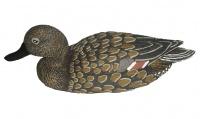 Чучело шилохвость плавающая (утка) 7502