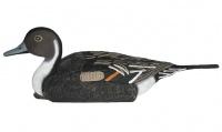 Чучело шилохвость плавающая (селезень) 7503