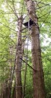 Засидка складная на дерево с лестницей CC-TS622