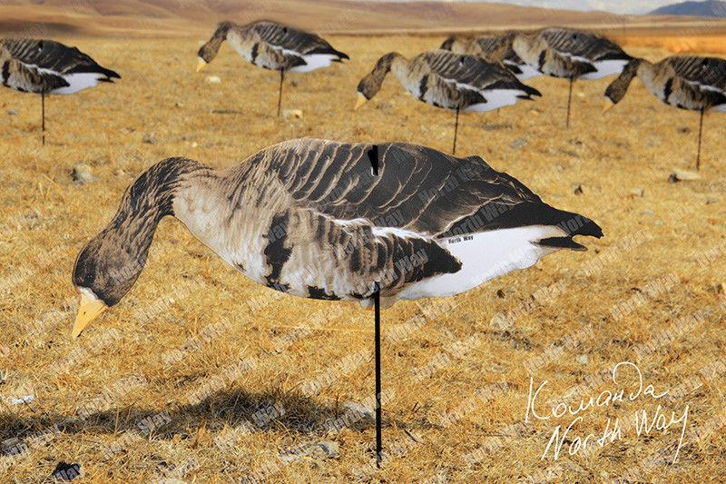 боеприпасы имеют фото гусиных флюгеров для охоты нашем быстро